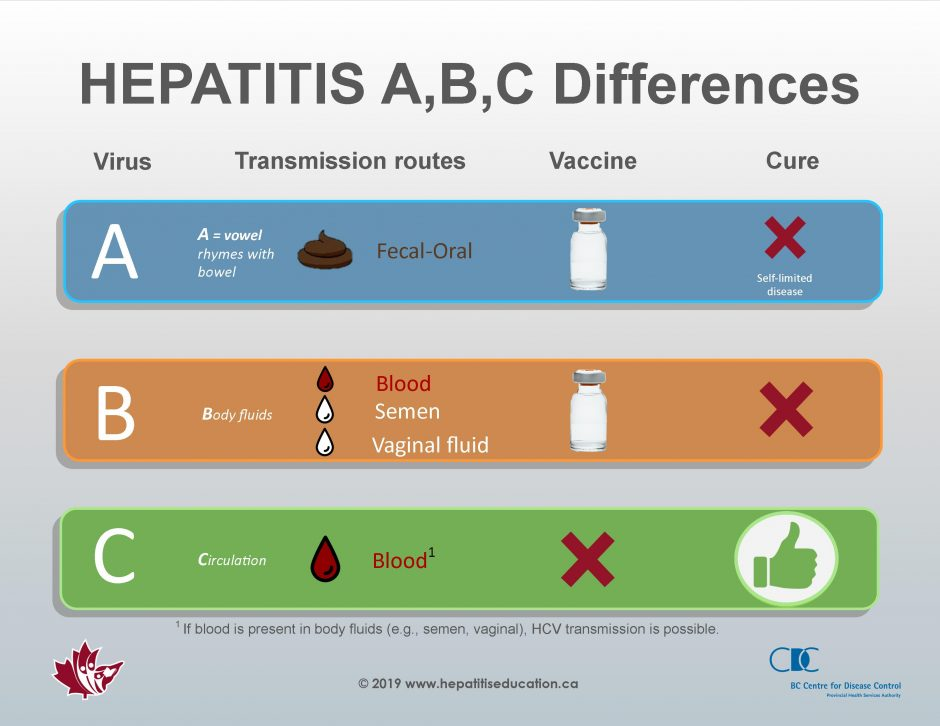 hepatitis c sexual transmission